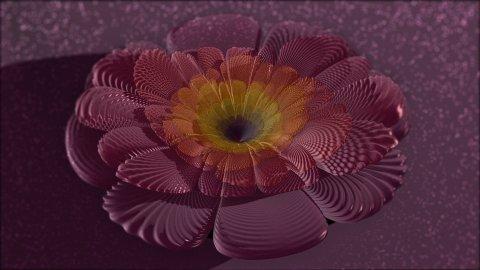 3dflower